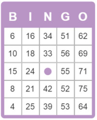 Estructura de las tarjetas de bingo